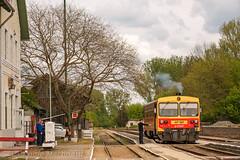 Stazioncina (Antonio Martinetti) Tags: train treno balaton mav siofok vlak vonat kaposvar vasut