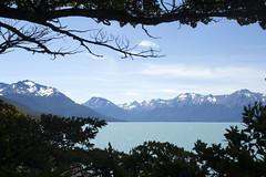 Argentinian Patagonia (sophs123.) Tags: travel patagonia lake nature argentina america canon landscape wildlife south glacier latinoamerica perito moreno canon400d