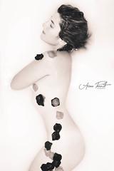 Florecer 01 (FotografiaAP) Tags: milk bath leche baera desnudo petalos florecer