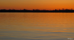 Orange morning - Matin orang (monteregina) Tags: qubec canada ca ciel sky nature water eau colors couleurs montrgie surot reflets reflections ripples vue view glow borddeleau riveside waterfront riviredesoutaouais ottawariver jaune yellow monteregina silhouettes mood rflexion refletsdansleau silhouette sunrise leverdesoleil orange ondulations matinorang orangemorning himmel
