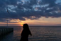 171/366 - Silhouette (Ravi_Shah) Tags: sunset bay sony nj potd lbi longbeachisland 2016 a6000 cy365
