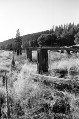 Genesee (Peter Gutierrez) Tags: photo united states us usa america american california ca californian plumas genesee geneseo west western southwest southwestern ghost town barn barns wood wooden abandoned old ruin ruins decay decayed weed weeds vegetation overgrown building buildings black white bw noir blanc blanco negro peter gutierrez petergutierrez film americana grass trees hills rural farm farms photograph photography