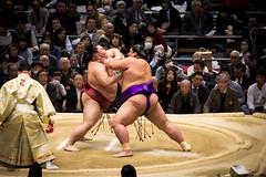 Sumo in Osaka-10 (Rodrigo Ramirez Photography) Tags: japan amazing traditional professional tournament osaka sumo yokozuna ozeki makuuchi hakuho sumotori sumotournament maegashira reikishi harumafuji topdivision