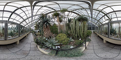 cacti house (360 x 180) (diwan) Tags: city panorama cacti canon germany geotagged deutschland eos place stitch roundabout indoor fisheye magdeburg stadt panoramix 360° kakteen botanischergarten 2015 fotogruppe ptgui equirectangular saxonyanhalt sachsenanhalt buckau kakteenhaus cactihouse klosterbergegarten canoneos650d grusongewächshäuser spivpano walimexprofisheye835 fotogruppemagdeburg geo:lon=11631247 geo:lat=52113719