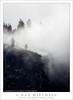 Cliffs Edge, Winter Mist