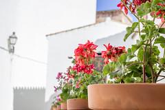 Arcos de la Frontera, Cadiz. (lolosawis) Tags: canon cadiz pueblosblancos arcosdelafrontera sierradecadiz canoneos600d