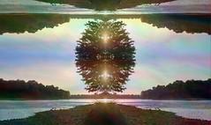 On An Island (seanpaynephoto) Tags: abstract photomanipulation abstractart fineart select