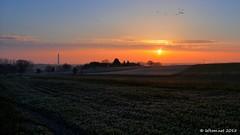 Lever du jour sur la Tour de Ronquires (leftom) Tags: leica tower rural sunrise landscape lumix countryside tour belgium belgique panasonic paysage campagne hdr aurore wallonie ronquires fz1000 leftom