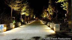 IMG_1122 (radical239) Tags: street night canon lights colours greece macedonia thessaloniki   sx220hs thessalonikinightlife
