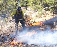 Fire prevention specialist Bob Blasi works to contain a small wildfire (USDAgov) Tags: forestry fs smokeybear wildfires kaibabnationalforest fireprevention