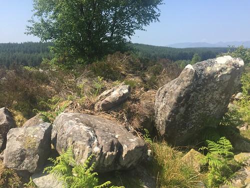 Stockie Muir Chambered Cairn