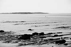 Low Tide Explorers (JamieHaugh) Tags: sea blackandwhite seascape water monochrome landscape outdoors coast blackwhite mud outdoor shore clevedon northsomerset bristolchannel