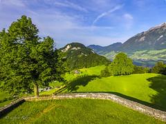 DJI_0029 (einfach Ralph) Tags: schweiz ch nidwalden ennetmoos djiphantom3 mai2016