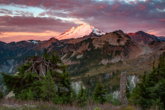 Majestic Mt. Baker (Stephanie Sinclair) Tags: trees snow mountains forest sunrise volcano nationalforest washingtonstate mtbaker northcascades artistpoint mtbakersnoqualmienationalforest stephaniesinclairphotography seattleempress