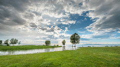 inverted landscape on waters tranquility  natures artistry. C. Lambeaux (marco soraperra) Tags: blue sunset sky lake tree green nature water grass clouds austria see nikon himmel wolken nikkor bodensee baum
