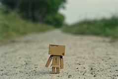 All alone (Mientsje) Tags: toy toys amazon doll figure danbo danboard