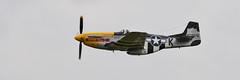 P-51D Mustang - Never Miss (albionphoto) Tags: usa reading kate pa b17 worldwarii mosquito corsair mustang fifi dday flyingfortress b29 superfortress maam dehavilland p51d nevermiss