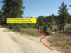 Laguna Hike 6-26-16 - Los Gatos and Chico Ravines - The Los Gatos trail begins right here beside the Wooded Hill campground road. (Bob_ Perry) Tags: laguna mtlaguna mountlaguna lasgatos losgatos chicoravine lmva lmra lagunamountainrecreation clevelandnationalforest lagunamedow