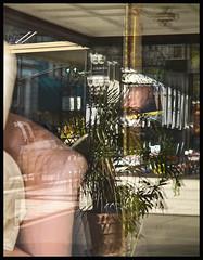 Shop Window 2016 #6 (hamsiksa) Tags: reflections downtown florida shops storefronts shopwindows deland cubism fracturing plateglass displaywindows subtropicpeninsula wooflandblvd