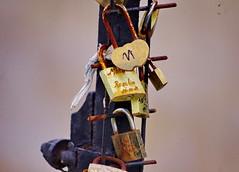 Paris Juin 2016 - 262 l'amour rouille tranquillement Square du Vert-Galnt (paspog) Tags: paris france love seine cadenas rust amour padlocks rouille ledelacit