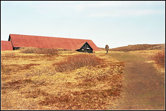 Iceland 2016 - 09 (derekwatt) Tags: travel film analog 35mm iceland nikon kodak exploring tourist adventure analogphotography nikonf4 c41 filmphotography portra400 unicolor ektar100
