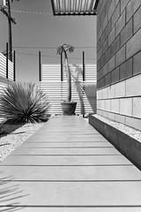 Desert Still Life (autobahn66.com) Tags: california blackandwhite architecture desert palmsprings modernism minimal deserthotsprings fineartphotography moern