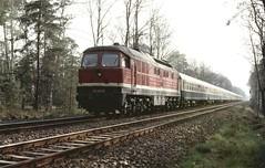 D-trein uit Hoek van Holland in West-Berlijn (Ahrend01) Tags: holland br ddr van 132 wannsee westberlin hoek d345 westberlijn drloc