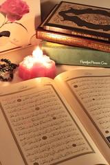 Kur'an 008 (PapatyaPrenses.Com) Tags: kuran