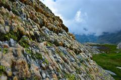 Lago del Nart - Passo del Nart - Val Torta - Capanna Cristallina 2575m - Lago Sfundau - Lago Nero - Bocchetta Lago Nero - Val Coro - Lago Laiozz - Lago Nart (Photo by Lele) Tags: lago naret cristallina ticino maini daniele fotografia sfundau laghetto alpino alpi svizzera nero robiei capanna ossasco val torta laiozz bocchetta laghi alpini bianco fiori cascata ghiacciaio basodino