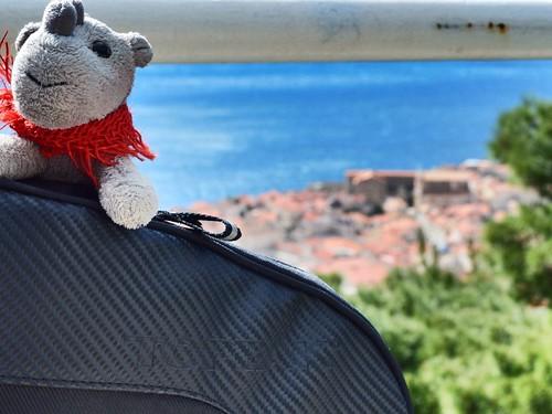 Ringo in Dubrovnik