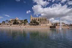 Palma Kathedrale (www.arternative-design.com) Tags: landscape nikon espana landschaft mallorca palma spanien santaponca valldemossa soller d810 nikond810