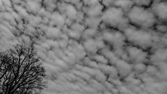 Wolkendecke (rgruen) Tags: sky blackandwhite bw clouds lumix himmel wolken bielefeld ostwestfalen sennestadt