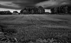 #7994 (UBU ♛) Tags: blackwhite noiretblanc biancoenero unamusicaintesta blusolitudine landscapeinblues bluubu luciombreepiccolicristalli ©ubu