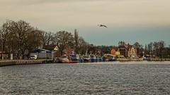Evening in fishing harbour (estigarr) Tags: sunset beach seaside fishing harbour balticsea