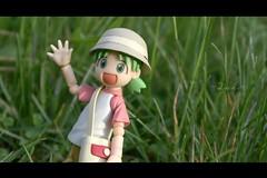 Yotsuba the safari explorer! (Princess Qwin) Tags: toy toys photography yotsuba danbo