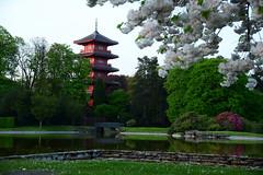 Japanese Tower (larry_antwerp) Tags: brussels tower belgium belgi brussel  laken royalgarden         koninklijkeserre