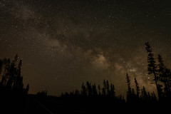 Central Oregon Night (llabe) Tags: trees night oregon stars nikon bend astrophotography milkyway mtbachelor d610