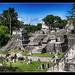 Tikal GCA - North Akropolis 04
