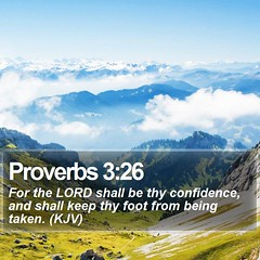 Daily Bible Verse - Proverbs 3:26 (daily-bible-verse) Tags: light cross grace pastor scriptures jesusislord dailyprayer