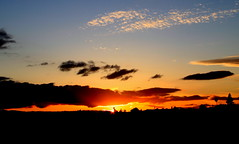 (huxx8888) Tags: sunsetting morganhill