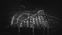 night out on the tiles (cherryspicks (off for a while)) Tags: roof blackandwhite storm art monochrome rain night digital cat manipulated mood nocturnal darkness creative atmosphere lightning overthetop noire