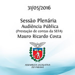 Sess�o Plen�ria - Audi�ncia P�blica 31/05/2016