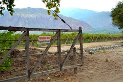 Tranquera (ariel mrtt) Tags: argentina nikon tranquera salta noa cafayate viñedos d3100