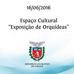 Espa�o Cultural - Exposi��o de Orqu�deas 16/06/2016