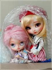Box moment - Madeleine Dolls (Pliash) Tags: girls cute girl asian japanese doll dolls gorgeous dal kawaii mio groove pullip kit custom pinocchio