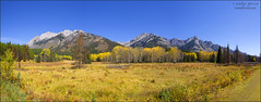 (evelyng23) Tags: autumn panorama canada mountains fall nature landscape pano sigma september alberta banff 1020mm banffnationalpark canadianrockies aficionados 2015 bowvalleyparkway sawbackrange hillsdalemeadows pentaxk5