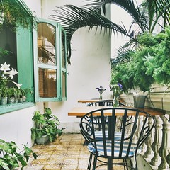 Thong mt yn tnh  #coffeeshop #vscocam #relaxing #summer #greens #trees #chairs #tables #hanoi #lovely #window #flowers #stressfulfreemonday (Duy Thnh Trn) Tags: flowers trees summer window chairs relaxing coffeeshop greens tables lovely hanoi vscocam stressfulfreemonday
