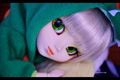 Dino Time! | Pullip Paja (Kumo~Milk^^) Tags: 2005 original doll stock hana groove pullip paja junplanning stockoutfit