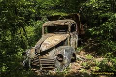 Neglected Truck (Tangled Web Photography) Tags: abandoned junk nikon neglected dumptruck wreck ruraldecay rustytruck sebagolake mainewoods oldgmc baldwinmaine douglasmountain d5100