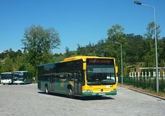 V.N.Famalico TUF 5001 (busfan3) Tags: transportes urbanos famalico arriva portugal mercedes benz citaro bus buses autocarro autocarros omnibussen autobus autobuses onibus bussen
